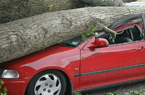 Car Wreck - Personal Insurance Coverage